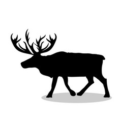 deer northern black silhouette animal vector image