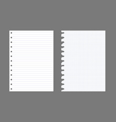 Exercise book paper page background notebook vector