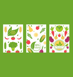 fresh natural food organic product banner vector image