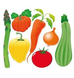 Vegetable family vector