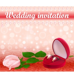 wedding background with a white rose vector image vector image
