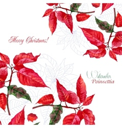 Background with bouquet of red poinsettia-01 vector