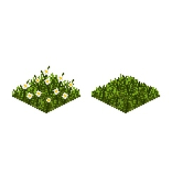 Isolated grass tile in pixel art vector