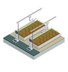 Isometric modern smart industrial greenhouse vector