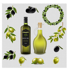 olive set with wreath isolated transparent vector image