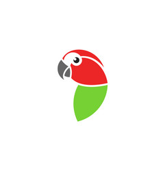 red macaw vector image