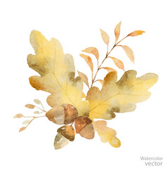 watercolor autumn bouquet of branches and vector image vector image