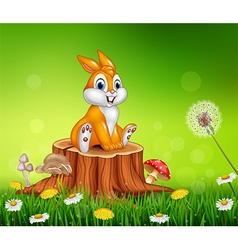 Cute bunny sitting on tree stump grass background vector image