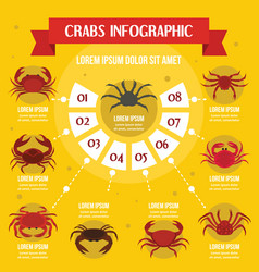 crabs infographic concept flat style vector image