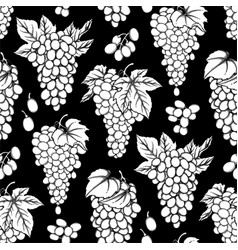 graphic seamless pattern of grapes bunches vector image