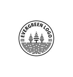pine tree logo design inspiration vector image