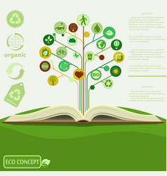 ecology info graphics modern design green tre vector image