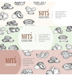 Nuts Package Design Banner Set vector image