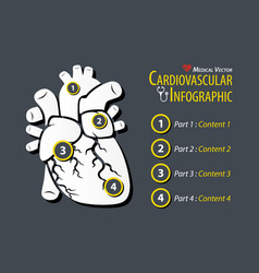 Cardiovascular infographic flat design vector