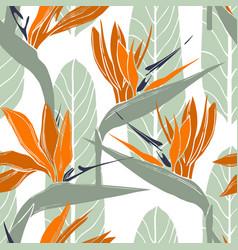 Hand drawn tropical flowers strelitzia seamless vector