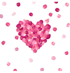 heart of pink rose petals vector image