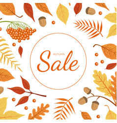 sale banner template with colorful autumn leaves vector image