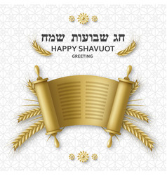 Shavuot greeting card with torah wheat and david vector
