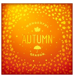 Autumn lettering label design vector image