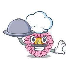 Chef with food gerbera flower isolated in the vector