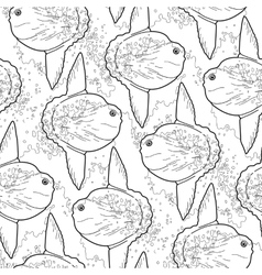 Graphic sunfish pattern vector