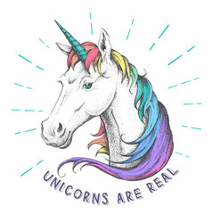 hand drawing hipster fantasy animal unicorn vector image