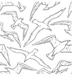 seamless pattern flying seagulls bird gull vector image