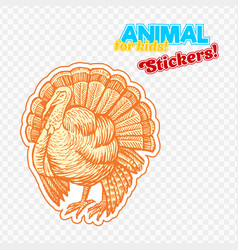 farm animal turkey in sketch style on colorful vector image vector image