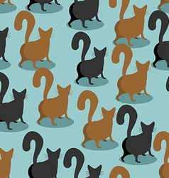 Back Cat seamless pattern Pets background Animal vector image vector image