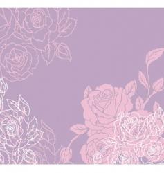 rose back vector image