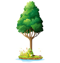 An island with a frog under the tree vector image