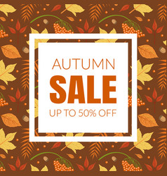 autumn sale banner template with colorful leaves vector image