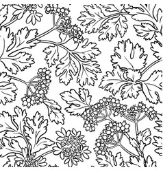 Coriander seamless pattern vector