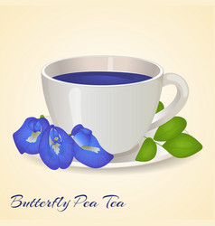 Cup of Blue tea with Butterfly Pea flowers and vector