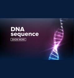 Dna structure human genome genetic vector