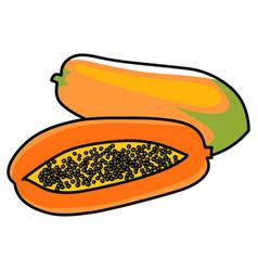 Graphic of papaya vector