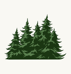 green fir trees vintage template vector image
