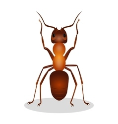 Realistic ant with two legs raised up hooked vector