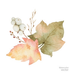 Watercolor bouquet of leaves and branches vector