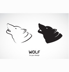wolf head design on white background wild vector image