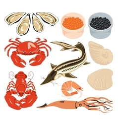 set marine animals vector image