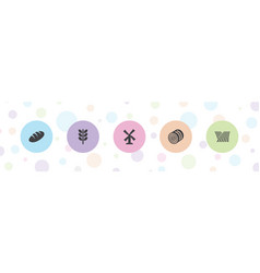 5 grain icons vector