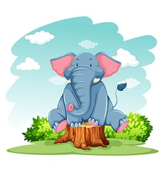 Elephant above trunk vector