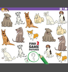 Find two same purebred dogs game for kids vector