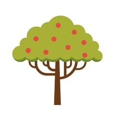 Green tree full of red apple garden summer organic vector image