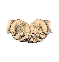 hands palms together sketch begging hands on vector image