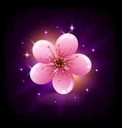 Pink sakura flower icon on dark background with vector