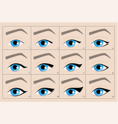 types of permanent makeup eyeliner arrow vector image