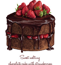 chocolate cake with strawberries vector image