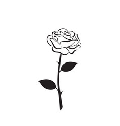 rose flower icon vector image vector image